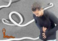 симптомы наличия глист у человека