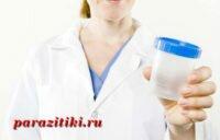 Как сдавать анализ на энтеробиоз, причины и лечение болезни