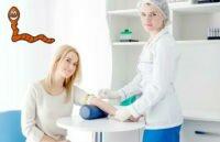 Кровяной сосальщик — причины заражения, лечение и профилактика