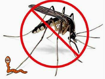 опасность малярийных комаров