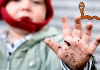 Лямблии у ребенка симптомы